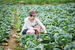 Asiatischer Mädchenlandwirt lizenzfreies stockfoto