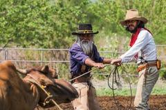 Asiatischer Mann-Cowboy f?ngt das in einer Ranch eingebrannt zu werden Kalb, lizenzfreie stockfotografie
