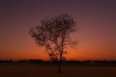Asiatischer Sonnenuntergang Stockfoto