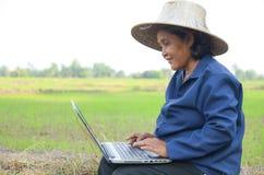 Asiatischer thailändischer Landwirt, der Laptop-Computer auf dem Reisgebiet verwendet Lizenzfreie Stockfotografie