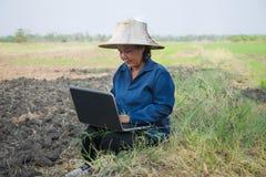 Asiatischer thailändischer Landwirt, der Laptop-Computer auf dem Reisgebiet verwendet Stockfotos