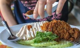 Asiatisches Arthuhn auf Reis Lizenzfreie Stockbilder