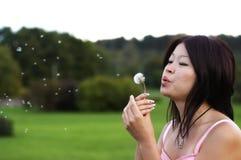 Asiatisches Mädchen mit Löwenzahn Lizenzfreies Stockfoto