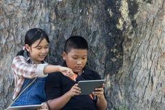 Asiatisches Mädchen und Junge, die Tablette auf Baumhintergrund schaut lizenzfreies stockfoto