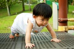 Asiatisches Schätzchen im Park Stockbilder