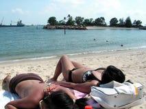 asiatisk bikinidamtoalett som suntanning royaltyfri bild