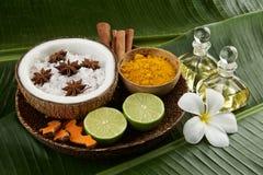 Asiatisk brunnsortinställning med kokosnöten, gurkmeja, limefrukt, kanel, anis arkivbilder
