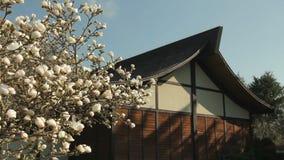 Asiatisk byggnad och blomningar