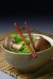 asiatisk cusine Royaltyfri Bild