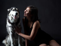 Asiatisk flicka och en Siberian husky Arkivbild