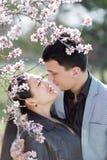 Asiatisk flicka- och europégrabb som kysser bland av att blomstra mandel b Royaltyfri Bild