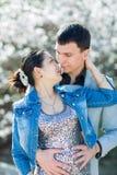 Asiatisk flicka- och europégrabb som kysser mot av att blomstra mandeln Royaltyfri Foto