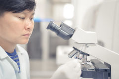 Asiatisk forskare som arbetar i laboratorium Royaltyfri Fotografi