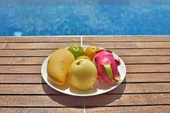 Asiatisk fruktsommar Fotografering för Bildbyråer