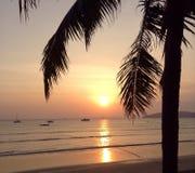 asiatisk härlig solnedgång fotografering för bildbyråer