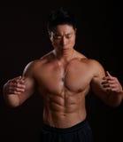 Asiatisk huvuddelbyggmästare som av visar hans abs Royaltyfri Foto