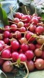 Asiatisk körsbärsröd frukt Arkivfoton