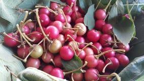 Asiatisk körsbärsröd frukt Arkivbild