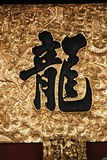 Asiatisk kalligrafi - drake royaltyfri fotografi