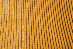 Asiatisk kines, Peking, glasad tegelplatta Arkivfoto