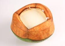 Asiatisk kokosnöt med vit bakgrund Arkivfoto