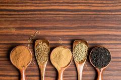 Asiatisk krydda på den lantliga träskeden och bakgrund royaltyfri foto