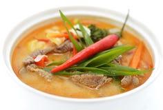 Asiatisk kryddig soppa med kött och papper som isoleras på vit Arkivfoto