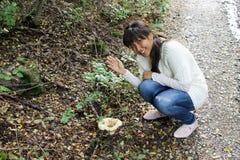 Asiatisk kvinna- eller flickaplockningchampinjon i naturen Arkivbilder