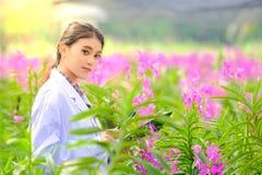 Asiatisk kvinna, forskare i den vita klänningen och att undersöka orkidéträdgården för ny orkidéart för forskning och för utveckl royaltyfria bilder