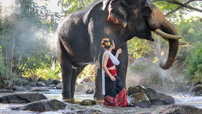 Asiatisk kvinna med elefanten i liten vik, Thailand lager videofilmer