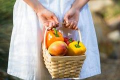 Asiatisk kvinna med korgen av spanska peppar och mango Arkivfoto