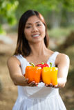 Asiatisk kvinna rymma färgrika spanska peppar Fotografering för Bildbyråer