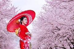 Asiatisk kvinna som bär den japanska traditionella kimonot och den körsbärsröda blomningen i våren, Japan royaltyfri fotografi