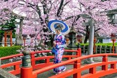 Asiatisk kvinna som bär den japanska traditionella kimonot och den körsbärsröda blomningen i våren, Kyoto tempel i Japan royaltyfri fotografi