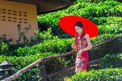 Asiatisk kvinna som bär klänningen för traditionell kines och det röda paraplyet i fält för grönt te arkivbild
