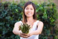 Asiatisk kvinna som rymmer en grupp av sparris Arkivbild