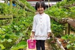 Asiatisk liten kinesisk flicka som väljer den nya jordgubben arkivfoton