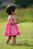 Asiatisk litet barnflicka i det gröna fältet som ser upp Royaltyfri Bild