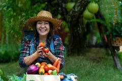 Asiatisk lycklig kvinnabonde som utomhus rymmer en korg av gr?nsaker organisk i ving?rden royaltyfri foto
