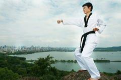 asiatisk man som leker taekwondo fotografering för bildbyråer