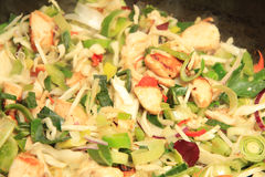 Asiatisk mat: höna och grönsaker Royaltyfria Bilder