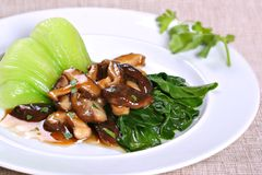 asiatisk maträttchampinjonvegetarian Royaltyfri Bild