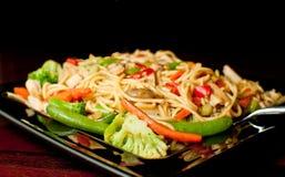 asiatisk maträttnudel Arkivfoton