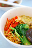 asiatisk nudelporkvegetarian Royaltyfria Bilder