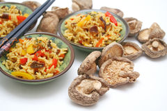 asiatisk rice royaltyfri bild