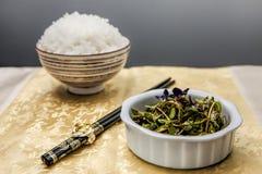 Asiatisk sallad och ris Royaltyfri Bild