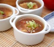 asiatisk soup Fotografering för Bildbyråer