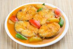 Asiatisk stil för Baracuda fiskcurry. Fotografering för Bildbyråer