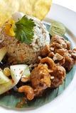Asiatisk stil stekte ris med fårköttcurry Arkivfoton