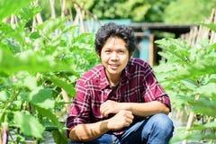 Asiatisk ung bonde i grönsakträdgård Arkivbild